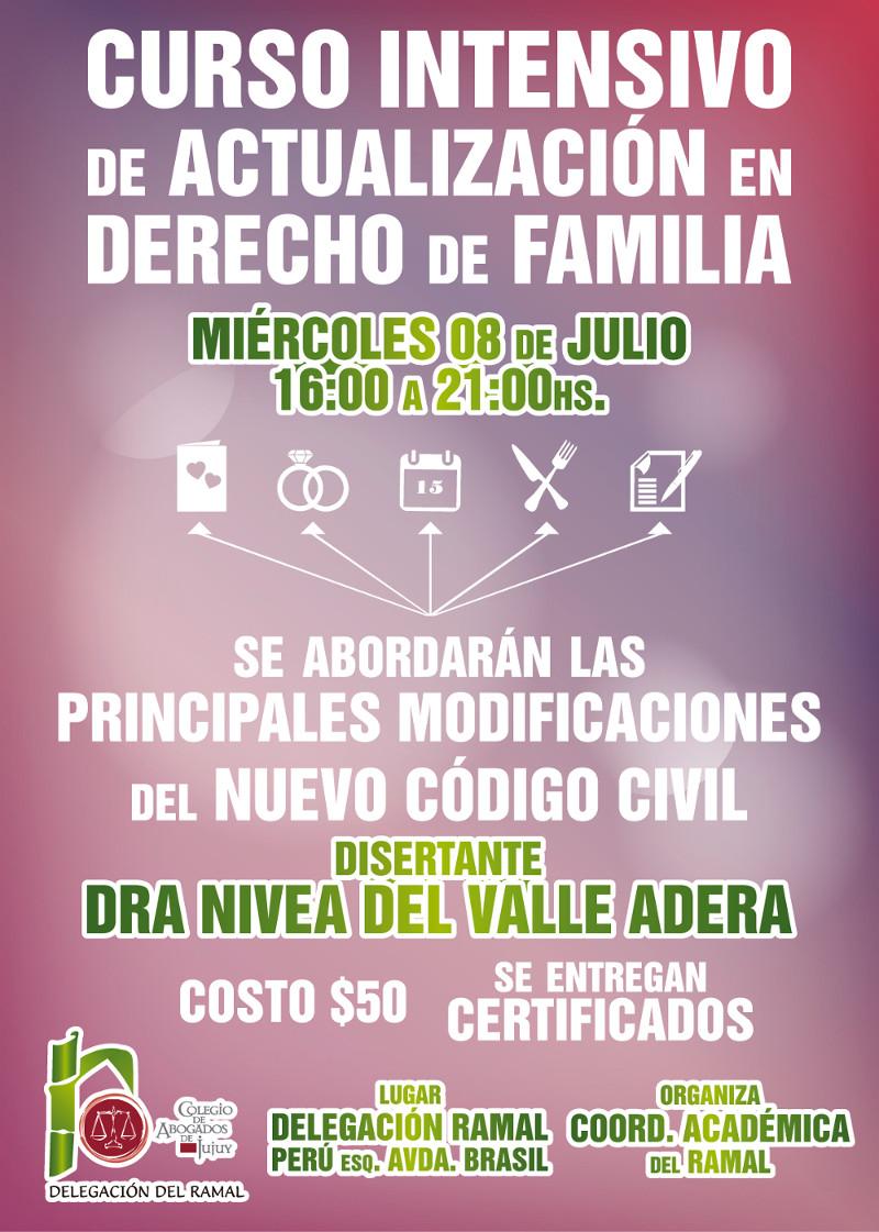 Curso intensivo de actualización en Derecho de Familia