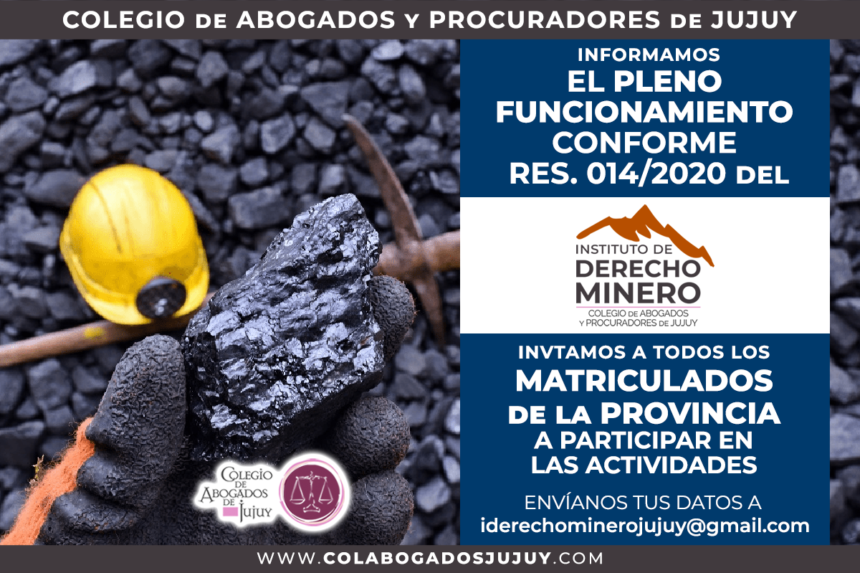 Invitación para participar del Instituto de Derecho Minero