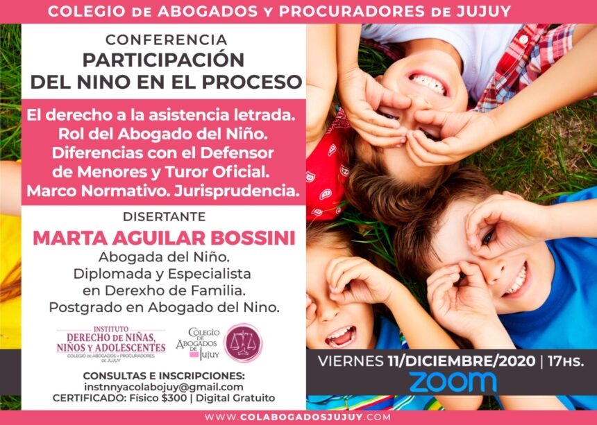 Conferencia: Participación del Niño en el proceso