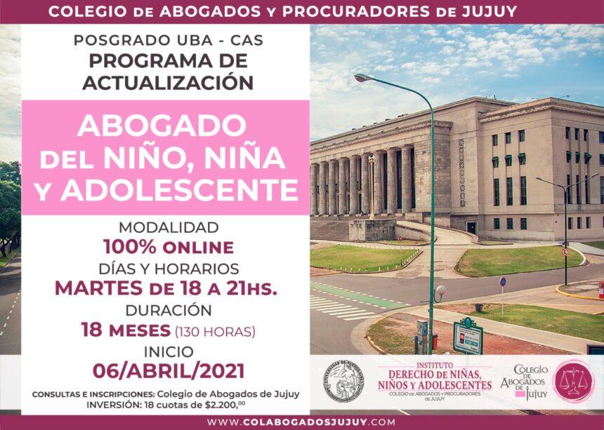 PROGRAMA DE ACTUALIZACIÓN ABOGADO DEL NIÑO, NIÑA Y ADOLESCENTE